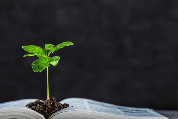 formation en agriculture et environnement